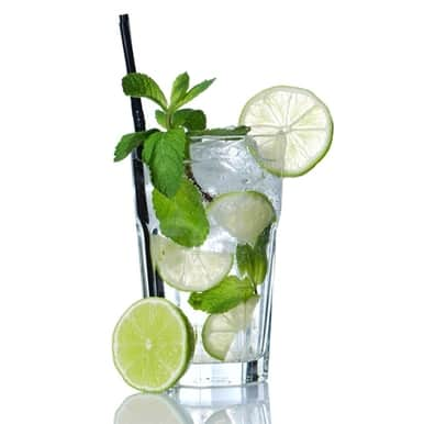The Flavor Apprentice - Mojito Havanna