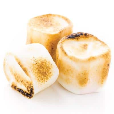 The Flavor Apprentice - Toasted Marshmallow